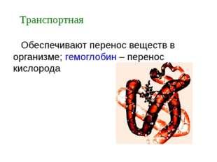 Обеспечивают перенос веществ в организме; гемоглобин – перенос кислорода Тра