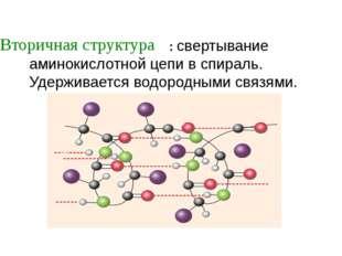 : свертывание аминокислотной цепи в спираль. Удерживается водородными связям