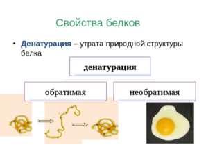 Денатурация – утрата природной структуры белка Свойства белков денатурация об