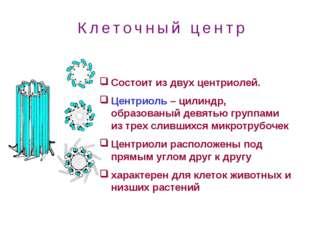 Состоит из двух центриолей. Центриоль – цилиндр, образованый девятью группами