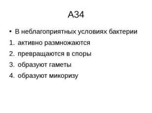 А34 В неблагоприятных условиях бактерии активно размножаются  превращаются в