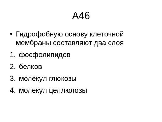 А46 Гидрофобную основу клеточной мембраны составляют два слоя фосфолипидов...
