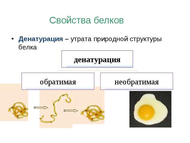 Денатурация – утрата природной структуры белка Свойства белков денатурация об...