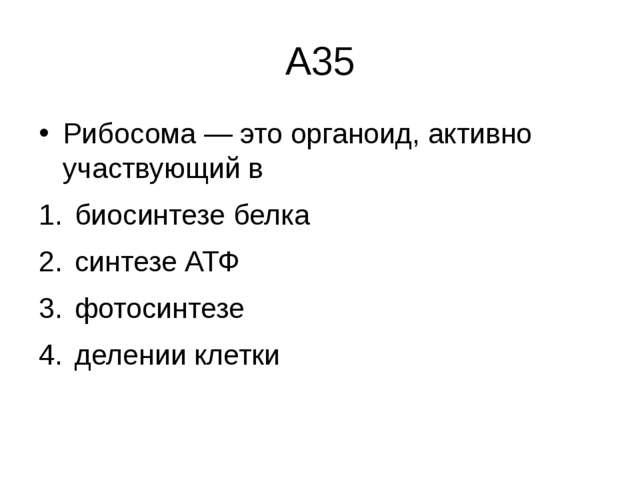 А35 Рибосома— это органоид, активно участвующий в биосинтезе белка  синтезе...