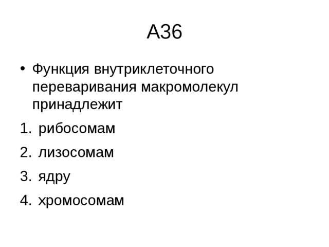 А36 Функция внутриклеточного переваривания макромолекул принадлежит рибосомам...