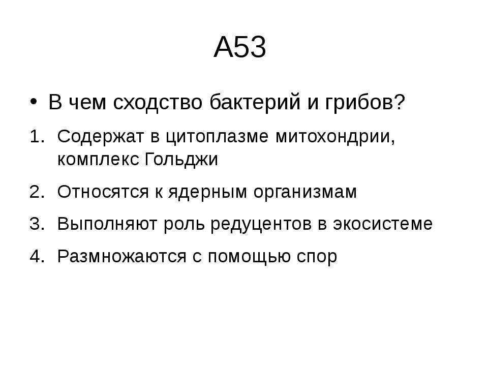А53 В чем сходство бактерий и грибов? Содержат в цитоплазме митохондрии, комп...