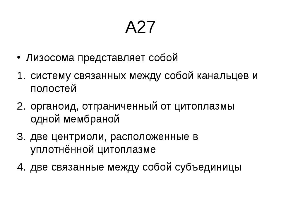 А27 Лизосома представляет собой систему связанных между собой канальцев и пол...