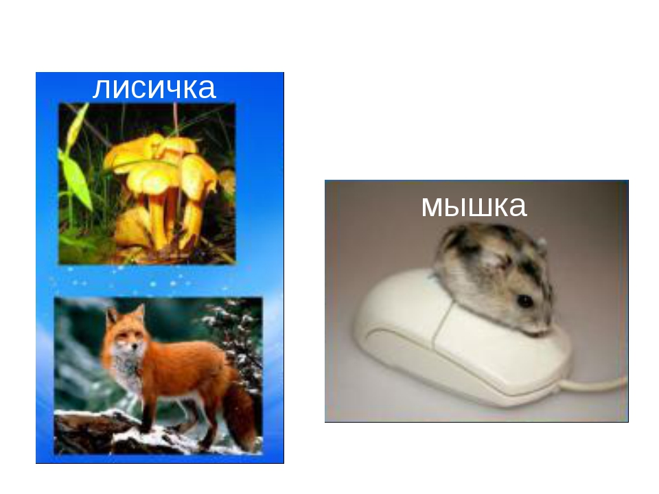 лисичка мышка