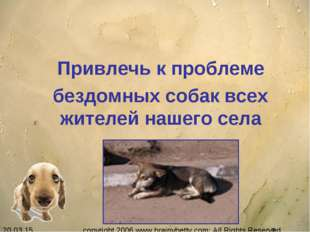 Привлечь к проблеме бездомных собак всех жителей нашего села copyright 2006