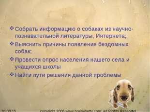Собрать информацию о собаках из научно-познавательной литературы, Интернета;
