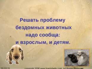 Решать проблему бездомных животных надо сообща: и взрослым, и детям. copyrig