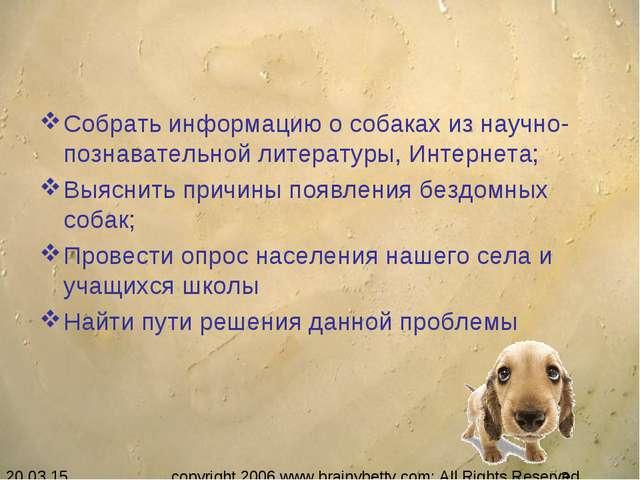 Собрать информацию о собаках из научно-познавательной литературы, Интернета;...