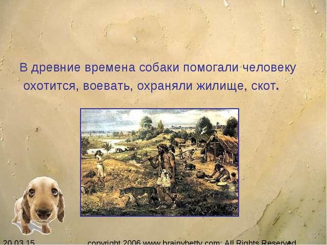 В древние времена собаки помогали человеку охотится, воевать, охраняли жилище...