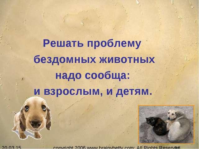 Решать проблему бездомных животных надо сообща: и взрослым, и детям. copyrig...