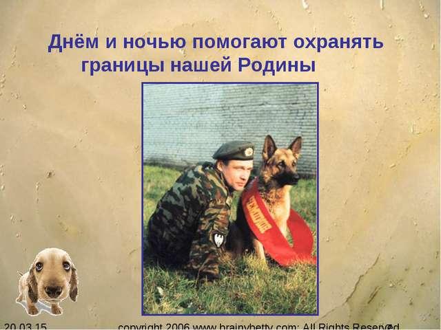 Днём и ночью помогают охранять границы нашей Родины copyright 2006 www.brain...