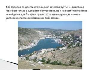 А.В. Суворов по достоинству оценил качества бухты: «...подобной гавани не то