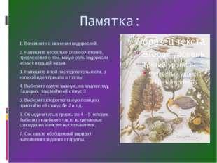 Памятка: 1. Вспомните о значении водорослей. 2. Напишите несколько словосоче