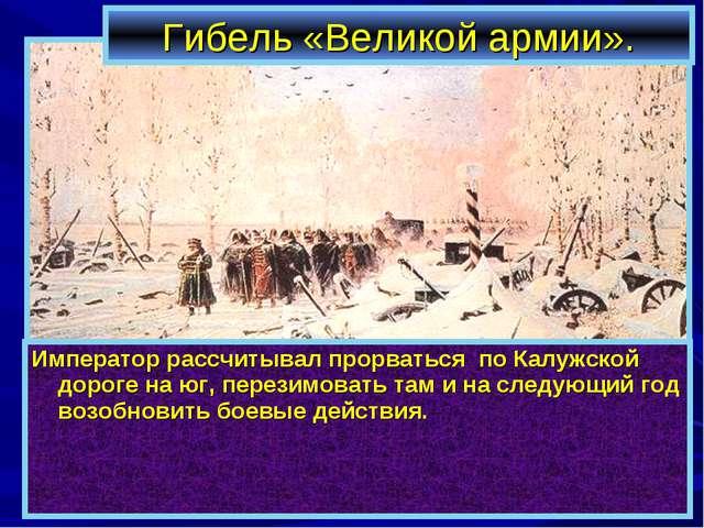 Гибель «Великой армии». Император рассчитывал прорваться по Калужской дороге...