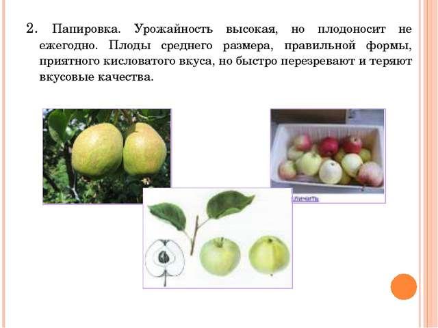 2. Папировка. Урожайность высокая, но плодоносит не ежегодно. Плоды среднего...