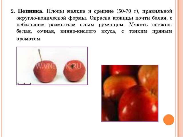2. Пепинка. Плоды мелкие и средние (50-70 г), правильной округло-конической ф...