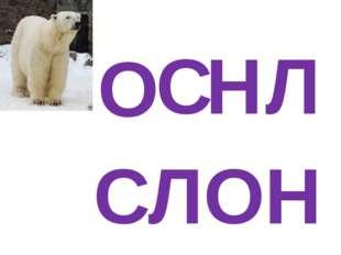 О С Л Н СЛОН
