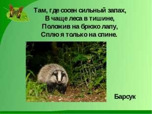 Там, где сосен сильный запах, В чаще леса в тишине, Положив на брюхо лапу, Сп