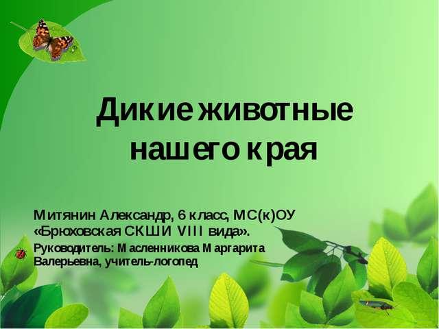 Дикие животные нашего края Митянин Александр, 6 класс, МС(к)ОУ «Брюховская СК...