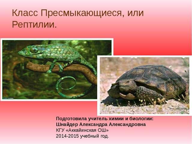 Класс Пресмыкающиеся, или Рептилии. Подготовила учитель химии и биологии: Шна...
