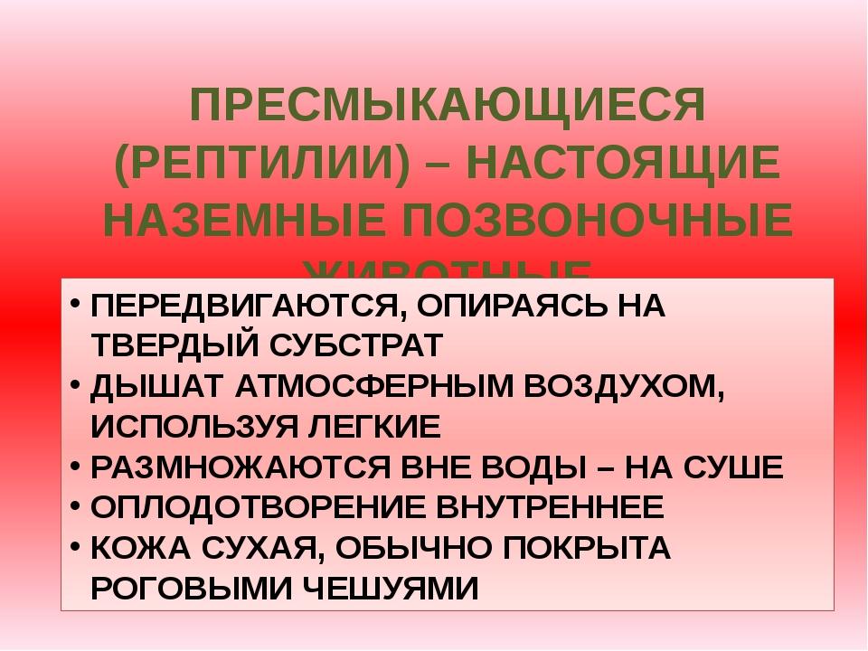 ПРЕСМЫКАЮЩИЕСЯ (РЕПТИЛИИ) – НАСТОЯЩИЕ НАЗЕМНЫЕ ПОЗВОНОЧНЫЕ ЖИВОТНЫЕ ПЕРЕДВИГА...