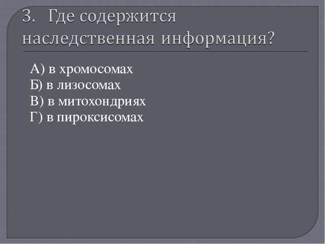 А) в хромосомах Б) в лизосомах В) в митохондриях Г) в пироксисомах «Мой униве...