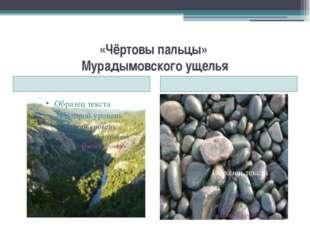 «Чёртовы пальцы» Мурадымовского ущелья