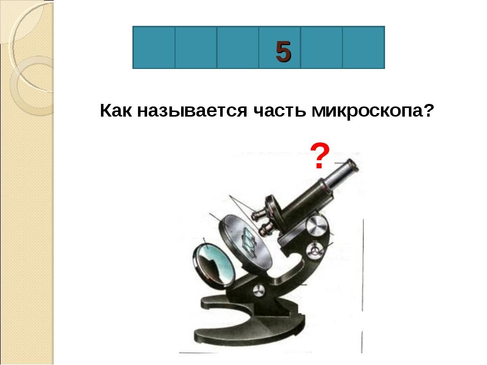 5 Как называется часть микроскопа? ?