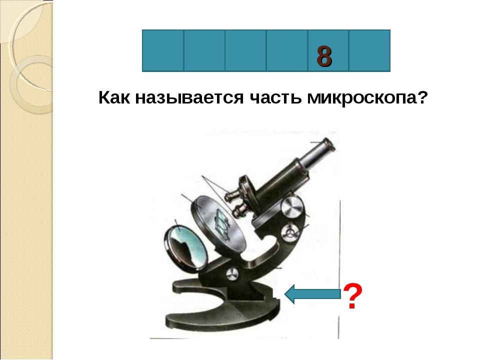 8 Как называется часть микроскопа? ?