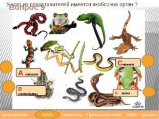 Вопрос 11 4 камерное сердце имеют: С крокодилы В черепахи А саламандры D трит