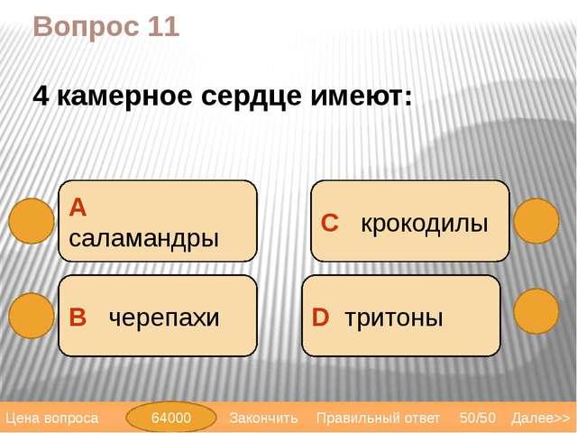 Вопрос 13 В А саламандра D уж С гадюка Далее>> 50/50 Правильный ответ Цена во...