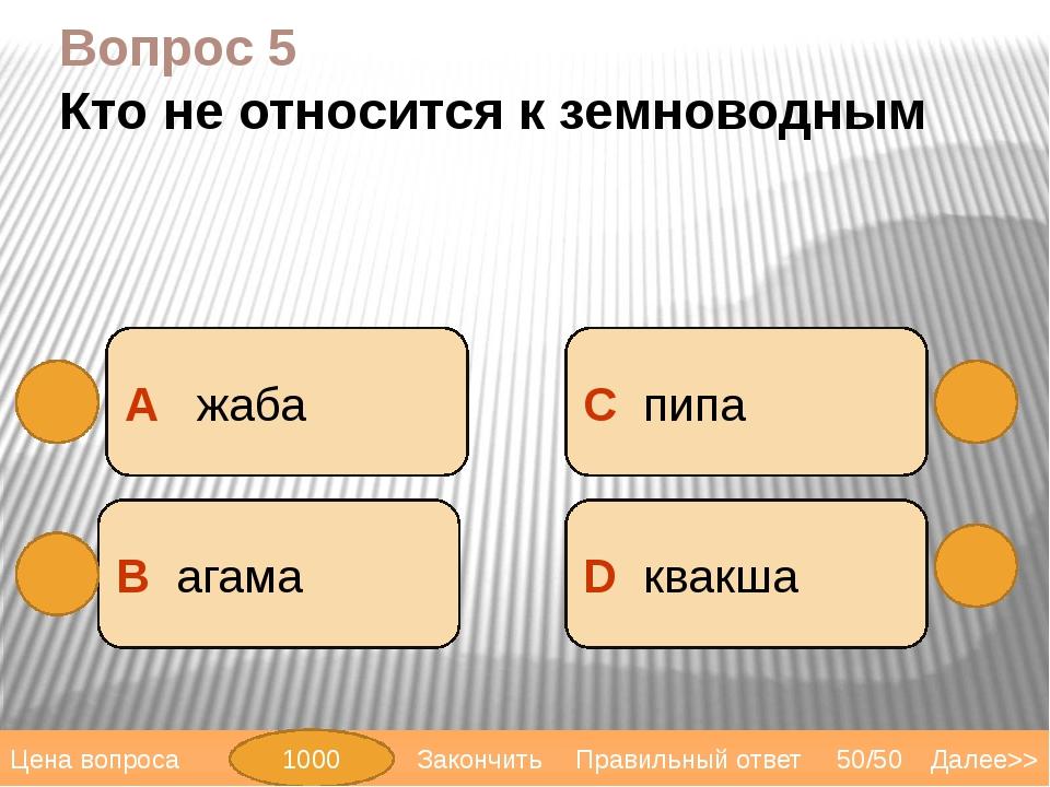 Вопрос 6 Кто не относится к пресмыкающимся: А тритон В удав D анаконда С пито...