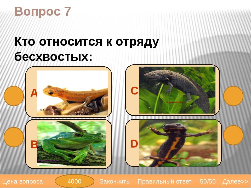 Вопрос 9 D змеи А лягушки В саламандры Сквакши Далее>> 50/50 Правильный ответ...