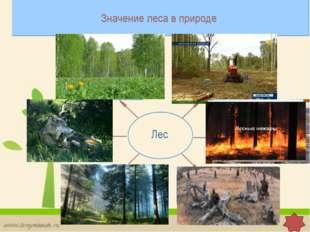 По данным регулярных наблюдений в 2011г., уровень загрязнения атмосферы в РФ