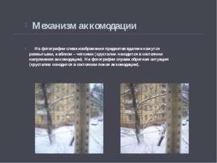 На фотографии слева изображения предметов вдалеке кажутся размытыми, а вблиз