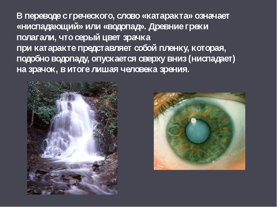 В переводе с греческого, слово «катаракта» означает «ниспадающий» или «водопа...