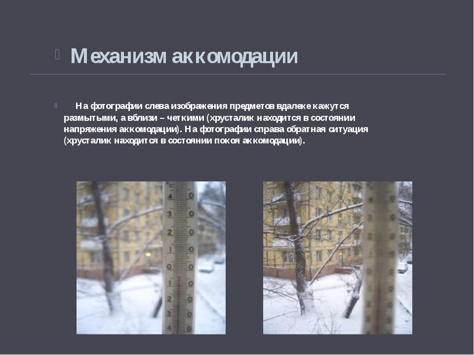На фотографии слева изображения предметов вдалеке кажутся размытыми, а вблиз...