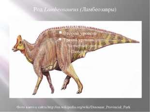 Род Lambeosaurus (Ламбеозавры) Фото взято с сайта http://en.wikipedia.org/wik