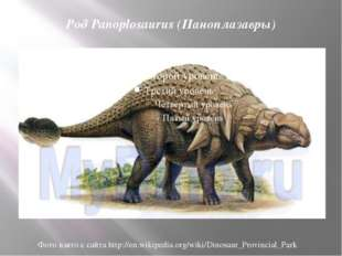 Род Panoplosaurus (Паноплазавры) Фото взято с сайта http://en.wikipedia.org/w