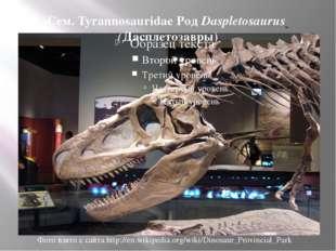 Сем. Tyrannosauridae Род Daspletosaurus (Дасплетозавры) Фото взято с сайта ht
