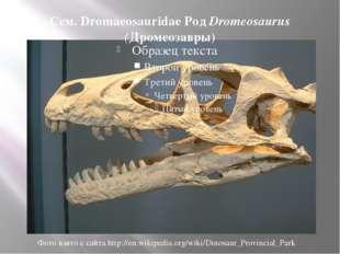 Сем. Dromaeosauridae Род Dromeosaurus (Дромеозавры) Фото взято с сайта http:/
