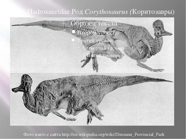 Сем. Hadrosauridae Род Corythosaurus (Коритозавры) Фото взято с сайта http://...