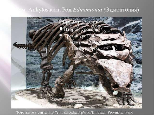 Сем. Ankylosauria Род Edmontonia (Эдмонтония) Фото взято с сайта http://en.wi...