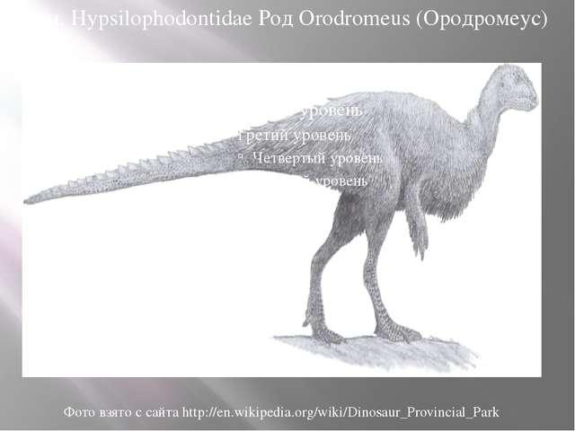 Сем. Hypsilophodontidae Род Orodromeus (Ородромеус) Фото взято с сайта http:/...