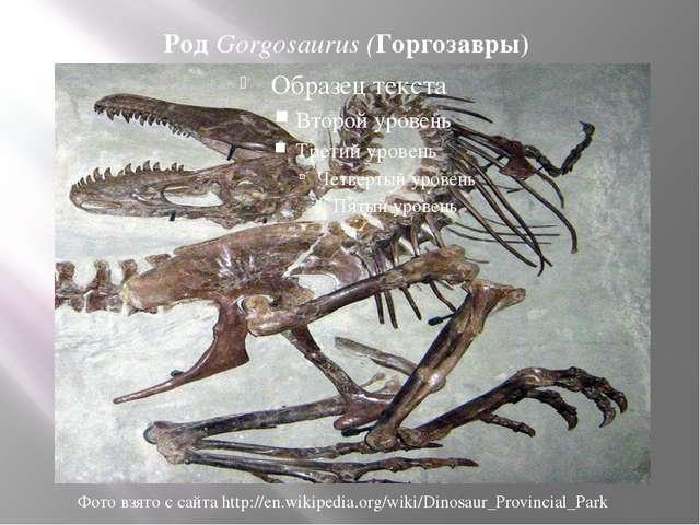 Род Gorgosaurus (Горгозавры) Фото взято с сайта http://en.wikipedia.org/wiki/...