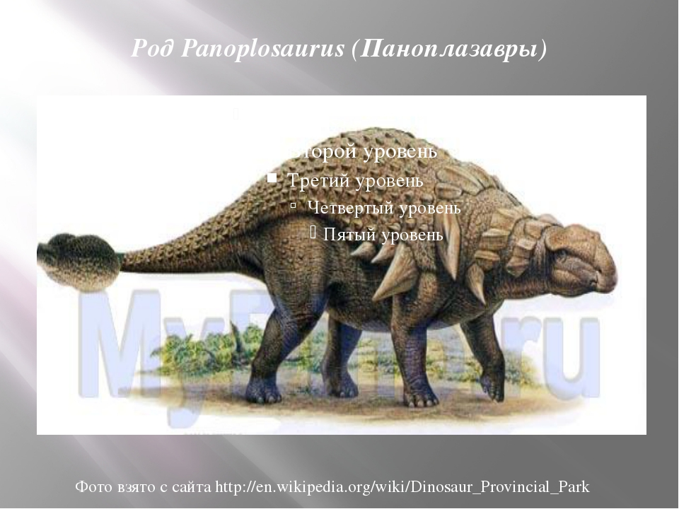 Род Panoplosaurus (Паноплазавры) Фото взято с сайта http://en.wikipedia.org/w...